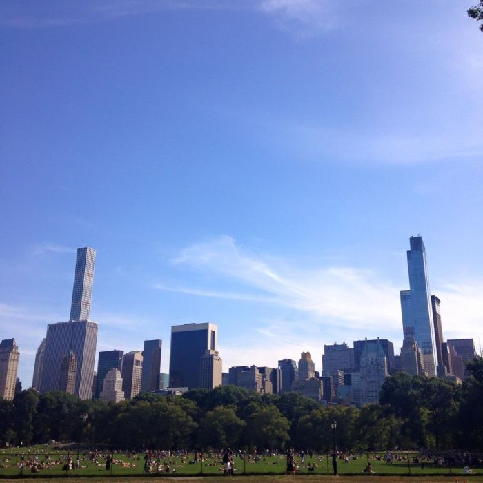 southern view from central park